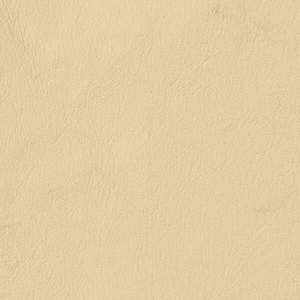 Tango Premium Leather Bone